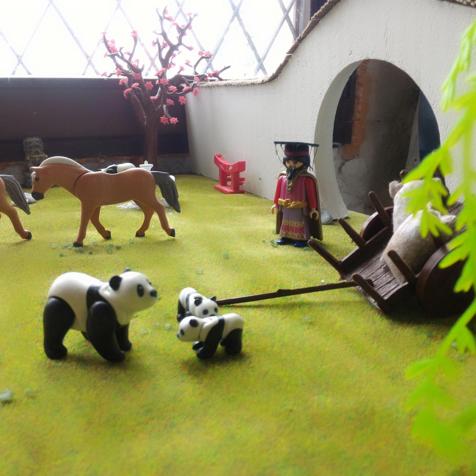 Le monde de l'asie en Playmobil